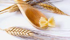 Free Italian Pasta Royalty Free Stock Photo - 17636685