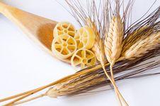 Free Italian Pasta Stock Photo - 17636700
