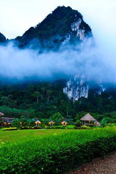 Free Nature At KhaoSok , Thailand Stock Photo - 17636800