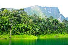 Free Nature At KhaoSok , Thailand Royalty Free Stock Photos - 17637168