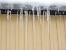 Free Melting Icicles Royalty Free Stock Photography - 17639157