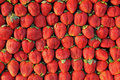 Free Fresh Strawberry Royalty Free Stock Photography - 17645197