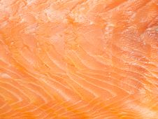 Free Macro Of Delicious Salmon Fillet Stock Images - 17640924