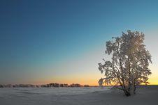 Free Winter Landscape Royalty Free Stock Photos - 17640938
