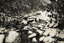 Free Snow Creek Stock Image - 17642791