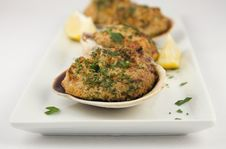 Free Stuffed Clams Appetizer Stock Image - 17644471