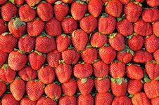 Free Fresh Strawberry Royalty Free Stock Photography - 17645197