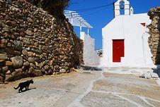 Black Cat Street Of Mykonos Stock Image