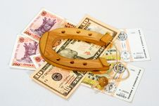 Free Souvenir Shoe Is On The Banknotes Royalty Free Stock Photos - 17649828