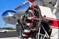 Free Radial Engine Royalty Free Stock Photos - 17654158