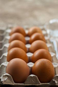 Free Egg Stock Photography - 17650902
