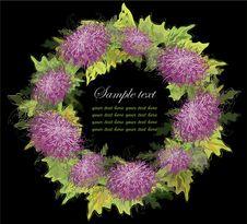 Decorative Framework. Chrysanthemum. Royalty Free Stock Photography