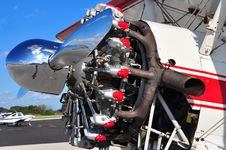 Free Radial Engine Royalty Free Stock Photos - 17654158