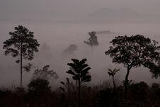 Free Fog Stock Photography - 17654242