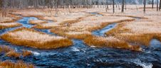 Free Dark Blue Stream And Frost Covered Grass Royalty Free Stock Photos - 17654548