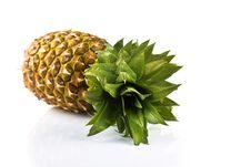 Free Pineapple Stock Photos - 17654893