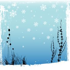 Free Winter Design Stock Photography - 17655462
