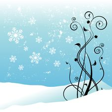 Free Winter Floral Design Royalty Free Stock Photos - 17655588
