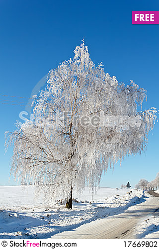 Free Winter Road On A Sunny Frosty Day Stock Photography - 17669802