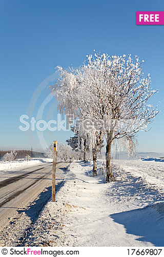 Free Winter Road On A Sunny Frosty Day Royalty Free Stock Photography - 17669807