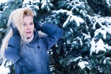 Free Young Blonde Standing Near The Snowed Spruce Stock Image - 17660261