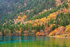 Free Autumn In Jiuzhaigou, Sichuan, China Royalty Free Stock Images - 17662409