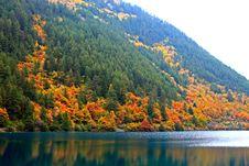 Free Autumn In Jiuzhaigou, Sichuan, China Royalty Free Stock Photography - 17662587