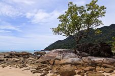 Free Tropical Rocky Beach With Rain Forest Royalty Free Stock Photo - 17662745