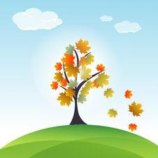 Free Autumn Card Stock Photography - 17663092