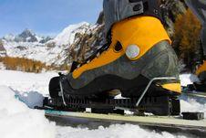 Free Skiing Royalty Free Stock Image - 17663856