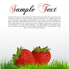 Free Fresh Strawberry Royalty Free Stock Image - 17665506