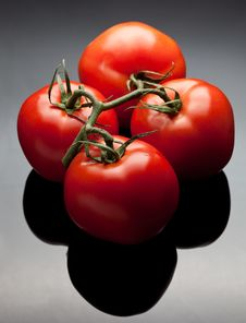 Free Red Tomatoes On Vine Stock Photos - 17668553