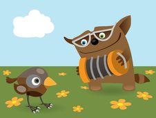 Free Cat And Sparrow Stock Photos - 17668933