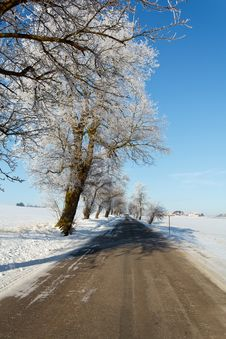 Free Winter Road On A Sunny Frosty Day Royalty Free Stock Photos - 17669808