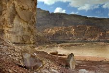 Free View On Timna Park, Israel Stock Photo - 17670600