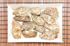 Free Oyster Stock Photography - 17672582