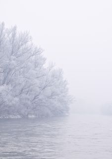 Free Foggy Winter Morning Royalty Free Stock Images - 17674499