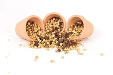 Free Spices Mixed Royalty Free Stock Photos - 17675558