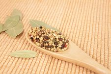 Free Spices Mixed Over The Spoon Royalty Free Stock Photo - 17675645