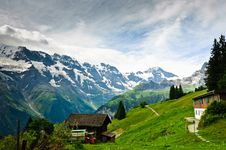 Free Alpine Meadows Stock Images - 17675724