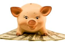 Piggy Bank (moneybox) Royalty Free Stock Photos