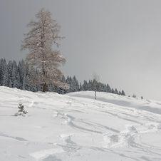 Free Alpine Slopes Stock Photo - 17678870