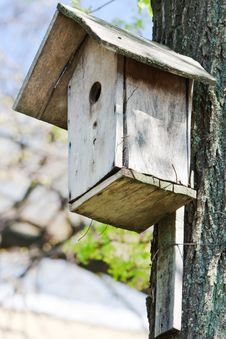 Free Homemade Wooden Bird House In Spring Stock Photo - 17680230