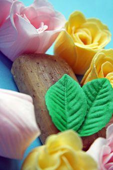 Free Soap Stock Photo - 17683860