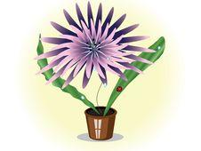 Free Flower Royalty Free Stock Photos - 17684228
