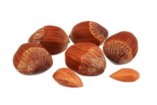 Free Hazel-nuts On The Isolated White Royalty Free Stock Photos - 17685348