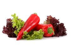 Free Bulgarian Red Pepper Royalty Free Stock Image - 17685516