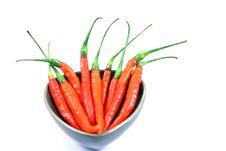 Free Red Chili Stock Image - 17686331