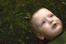 Free A Little Boy Stock Photos - 17686533