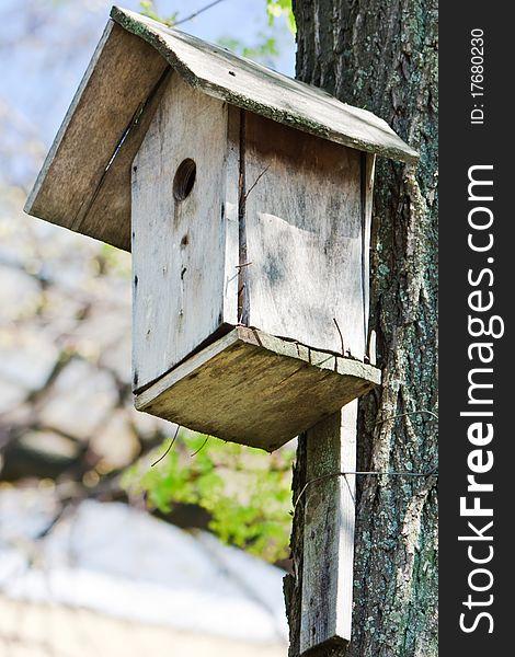 Homemade wooden bird house in spring